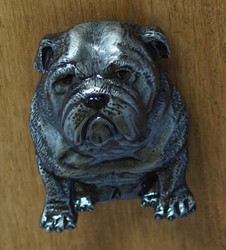 "Buckle / gesp  "" Bull dog """