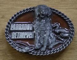 """Riem buckle  """" Labrador retriever """"  Bruin"""