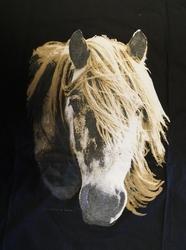 """T-shirt  """" Paardenhoofd  """"   Zwart"""