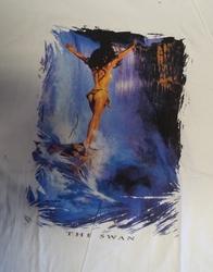 """T-shirt  """" The swan,   Indiaanse bij waterval """"   Wit"""