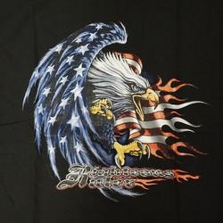 """T-shirt  """" Rebelvlag met adelaar """"   Zwart"""